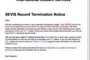 因未按时提交材料,至少30名中国留学生F-1签证失效,美国高校强硬劝退引发争议