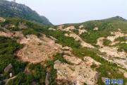 拆除、复绿:福州市持续开展违建坟墓专项整治行动