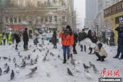 """黑龙江暴雪来袭:游客""""以雪为令""""赏冬景"""